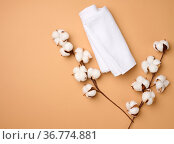 Folded white cotton terry towel and sprigs of cotton flower on a light... Стоковое фото, фотограф Zoonar.com/DANK0 NN / easy Fotostock / Фотобанк Лори