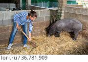 Woman farmer standing with rake in pigsty. Стоковое фото, фотограф Яков Филимонов / Фотобанк Лори