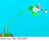 Artificial flower in handpainted glass bottle on green blue pastel... Стоковое фото, фотограф Zoonar.com/Valery Voennyy / easy Fotostock / Фотобанк Лори