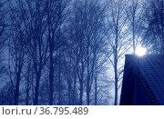 Wintersonne mit Strahlen am Haus, Laubwald im Winter, Стоковое фото, фотограф Zoonar.com/Bildagentur Geduldig / easy Fotostock / Фотобанк Лори