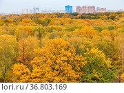 Yellow city park and residential district on horizon on overcast autumn... Стоковое фото, фотограф Zoonar.com/Valery Voennyy / easy Fotostock / Фотобанк Лори