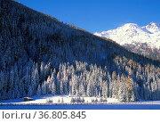Winter landscape over st. gertrude, ultimo valley, italy. Стоковое фото, фотограф Danilo Donadoni / age Fotostock / Фотобанк Лори