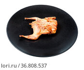 Roasted whole flattened quail on black plate isolated on white background... Стоковое фото, фотограф Zoonar.com/Valery Voennyy / easy Fotostock / Фотобанк Лори