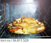 Fried chicken dish with potato view inside oven. Стоковое фото, фотограф Сергей Новиков / Фотобанк Лори