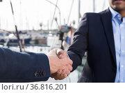 handshake of two businessmen near the yachts in seaport. Стоковое фото, фотограф Татьяна Яцевич / Фотобанк Лори