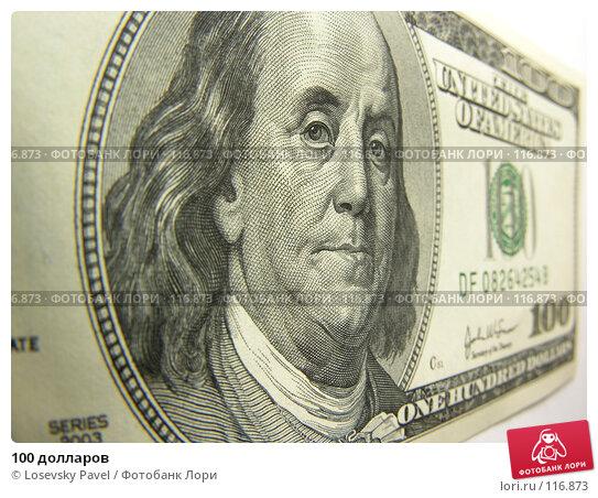 Купить «100 долларов», фото № 116873, снято 5 февраля 2006 г. (c) Losevsky Pavel / Фотобанк Лори