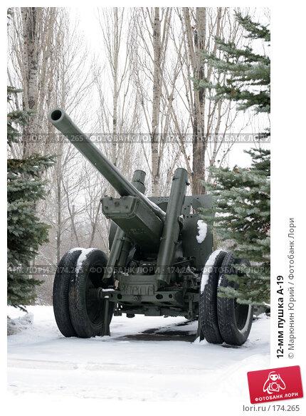 12-мм пушка А-19, фото № 174265, снято 1 декабря 2007 г. (c) Марюнин Юрий / Фотобанк Лори