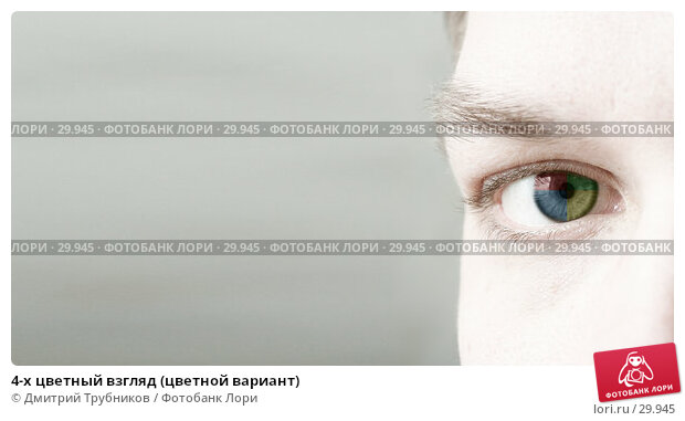 4-х цветный взгляд (цветной вариант), фото № 29945, снято 22 марта 2007 г. (c) Дмитрий Трубников / Фотобанк Лори