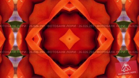 Купить «4K Colorful looping kaleidoscope sequence. Abstract motion graphics background.», видеоролик № 26026293, снято 13 апреля 2017 г. (c) Роман Будников / Фотобанк Лори