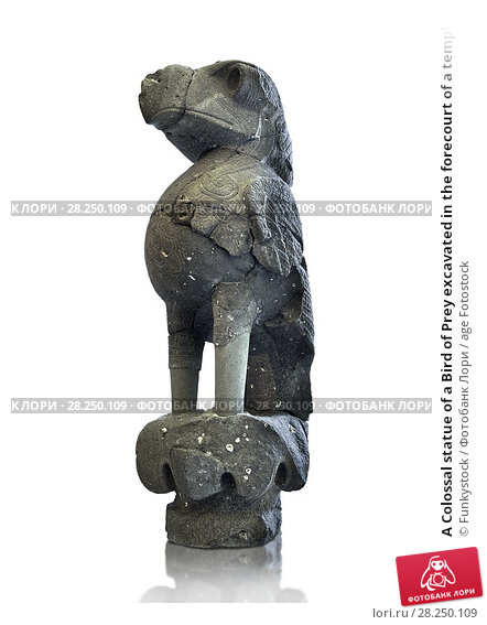 Купить «A Colossal statue of a Bird of Prey excavated in the forecourt of a temple palace at Tell Halaf, Syria. Originally the bird statue had coloured stones...», фото № 28250109, снято 12 июня 2011 г. (c) age Fotostock / Фотобанк Лори