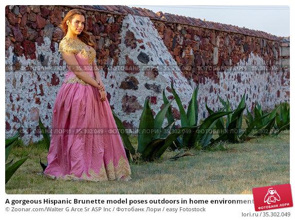 A gorgeous Hispanic Brunette model poses outdoors in home environment. Стоковое фото, фотограф Zoonar.com/Walter G Arce Sr ASP Inc / easy Fotostock / Фотобанк Лори