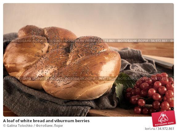 A loaf of white bread and viburnum berries. Стоковое фото, фотограф Galina Tolochko / Фотобанк Лори