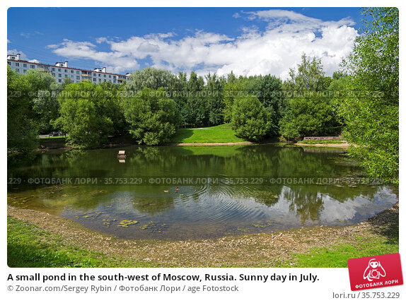 A small pond in the south-west of Moscow, Russia. Sunny day in July. Стоковое фото, фотограф Zoonar.com/Sergey Rybin / age Fotostock / Фотобанк Лори