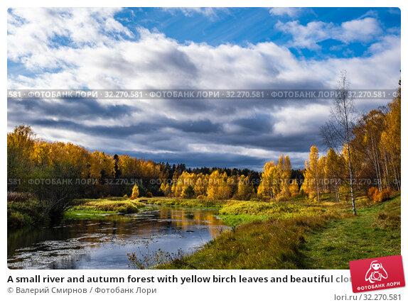 Купить «A small river and autumn forest with yellow birch leaves and beautiful clouds», фото № 32270581, снято 5 октября 2019 г. (c) Валерий Смирнов / Фотобанк Лори