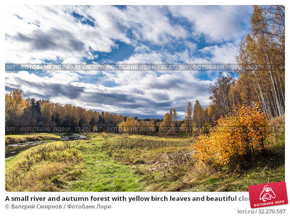Купить «A small river and autumn forest with yellow birch leaves and beautiful clouds», фото № 32270597, снято 5 октября 2019 г. (c) Валерий Смирнов / Фотобанк Лори