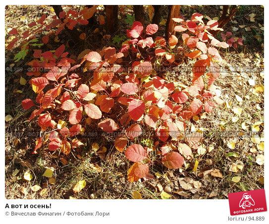 А вот и осень!, фото № 94889, снято 28 сентября 2007 г. (c) Вячеслав Финагин / Фотобанк Лори