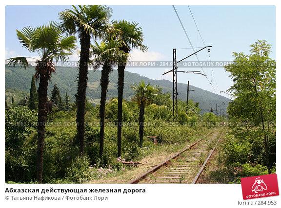 Абхазская действующая железная дорога, фото № 284953, снято 5 июля 2007 г. (c) Татьяна Нафикова / Фотобанк Лори