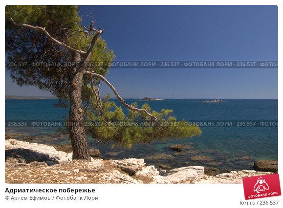 Адриатическое побережье, фото № 236537, снято 15 июля 2007 г. (c) Артем Ефимов / Фотобанк Лори