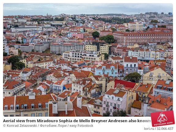 Aerial view from Miradouro Sophia de Mello Breyner Andresen also known as Miradouro da Graca viewing point in Lisbon, Portugal. Стоковое фото, фотограф Konrad Zelazowski / easy Fotostock / Фотобанк Лори