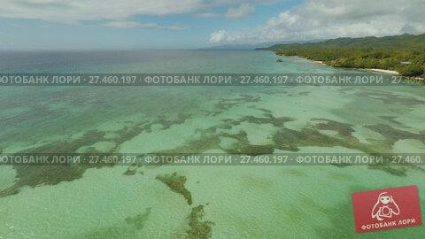 Купить «Aerial view of Bohol coast Island. Aerial. Philippines.», видеоролик № 27460197, снято 20 января 2018 г. (c) Mikhail Davidovich / Фотобанк Лори