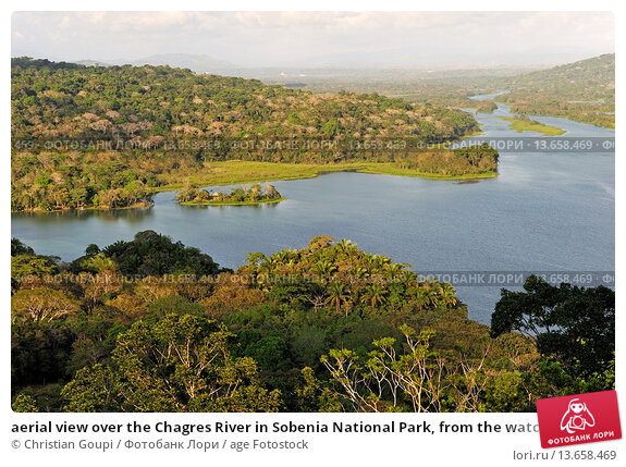 Купить «aerial view over the Chagres River in Sobenia National Park, from the watching tower of the Gamboa Resort, Republic of Panama, Central America», фото № 13658469, снято 18 февраля 2019 г. (c) age Fotostock / Фотобанк Лори
