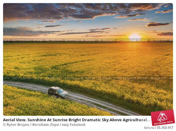 Aerial View. Sunshine At Sunrise Bright Dramatic Sky Above Agricultural... Стоковое фото, фотограф Ryhor Bruyeu / easy Fotostock / Фотобанк Лори