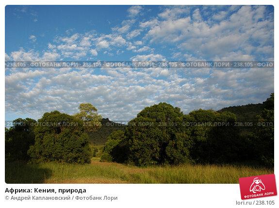 Африка: Кения, природа, фото № 238105, снято 17 февраля 2005 г. (c) Андрей Каплановский / Фотобанк Лори