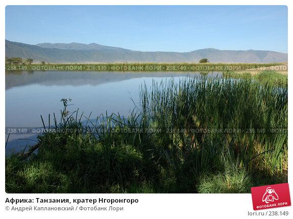 Африка: Танзания, кратер Нгоронгоро, фото № 238149, снято 18 февраля 2005 г. (c) Андрей Каплановский / Фотобанк Лори