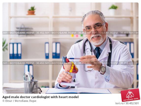 Aged male doctor cardiologist with heart model. Стоковое фото, фотограф Elnur / Фотобанк Лори