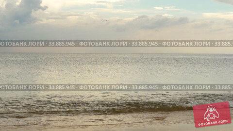 Купить «Airplane approaching over ocean beach», видеоролик № 33885945, снято 28 мая 2020 г. (c) Игорь Жоров / Фотобанк Лори