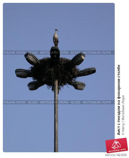 Аист с гнездом на фонарном столбе, фото № 42633, снято 27 апреля 2005 г. (c) Harry / Фотобанк Лори