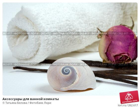 Купить «Аксессуары для ванной комнаты», фото № 262617, снято 20 апреля 2008 г. (c) Татьяна Белова / Фотобанк Лори