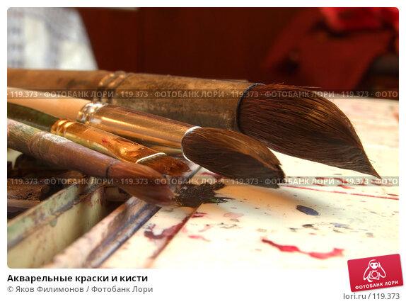Акварельные краски и кисти, фото № 119373, снято 10 ноября 2007 г. (c) Яков Филимонов / Фотобанк Лори