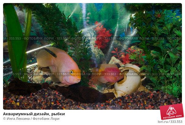 Аквариумный дизайн, рыбки, фото № 333553, снято 7 мая 2008 г. (c) Инга Лексина / Фотобанк Лори