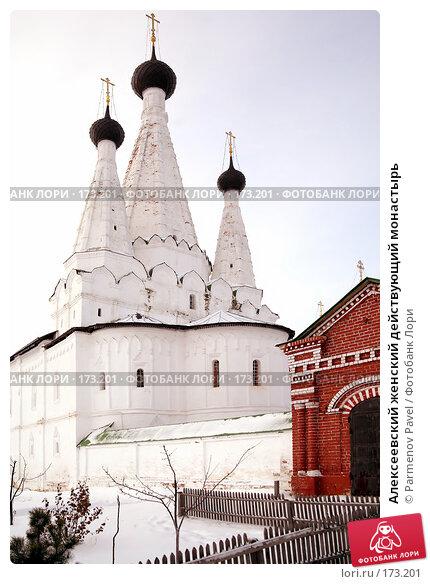 Купить «Алексеевский женский действующий монастырь», фото № 173201, снято 2 января 2008 г. (c) Parmenov Pavel / Фотобанк Лори