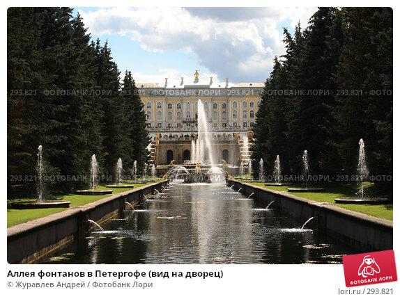 Аллея фонтанов в Петергофе (вид на дворец), эксклюзивное фото № 293821, снято 23 июля 2007 г. (c) Журавлев Андрей / Фотобанк Лори