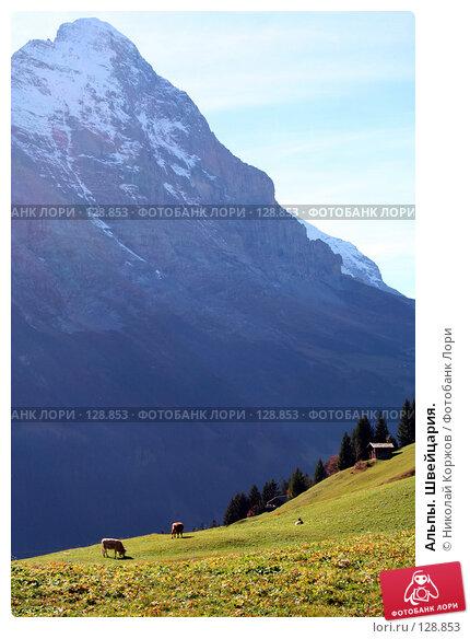 Альпы. Швейцария., фото № 128853, снято 29 сентября 2006 г. (c) Николай Коржов / Фотобанк Лори