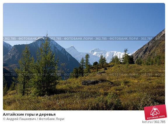 Алтайские горы и деревья, фото № 302785, снято 23 июня 2017 г. (c) Андрей Пашкевич / Фотобанк Лори