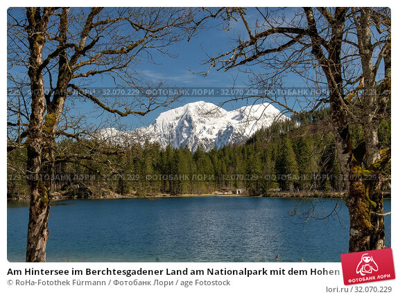 Am Hintersee im Berchtesgadener Land am Nationalpark mit dem Hohen Göll im Hintergrund, Bayern, Deutschland. Стоковое фото, фотограф RoHa-Fotothek Fürmann / age Fotostock / Фотобанк Лори