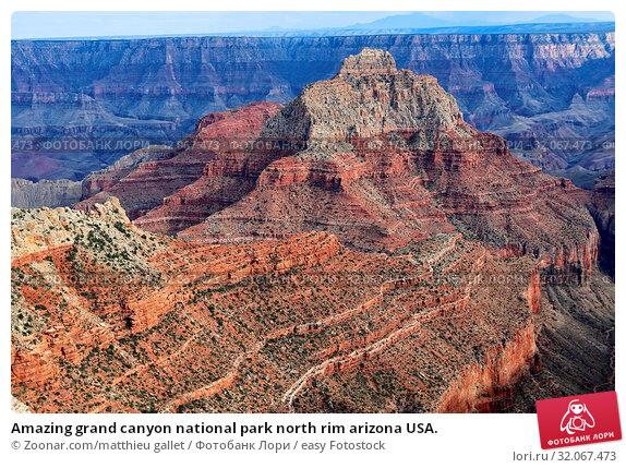 Amazing grand canyon national park north rim arizona USA. Стоковое фото, фотограф Zoonar.com/matthieu gallet / easy Fotostock / Фотобанк Лори