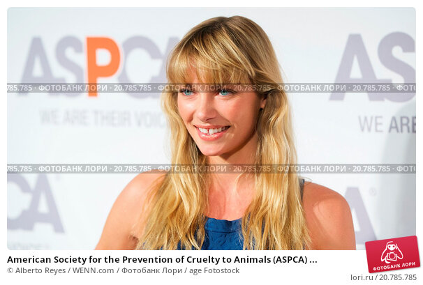 Essay on prevention of cruelty to animals