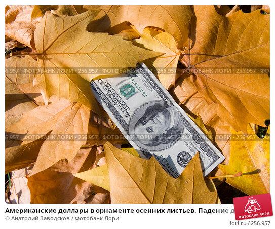 Американские доллары в орнаменте осенних листьев. Падение доллара, фото № 256957, снято 23 сентября 2007 г. (c) Анатолий Заводсков / Фотобанк Лори
