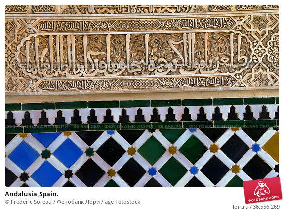 Andalusia,Spain. Стоковое фото, фотограф Frederic Soreau / age Fotostock / Фотобанк Лори