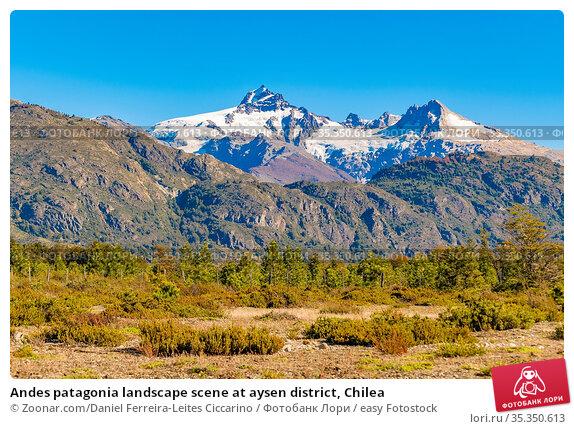 Andes patagonia landscape scene at aysen district, Chilea. Стоковое фото, фотограф Zoonar.com/Daniel Ferreira-Leites Ciccarino / easy Fotostock / Фотобанк Лори