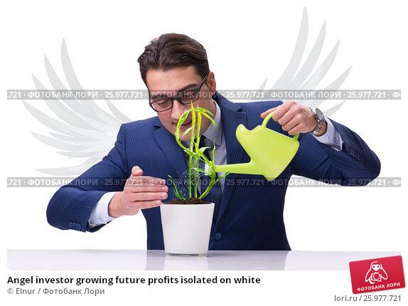 Купить «Angel investor growing future profits isolated on white», фото № 25977721, снято 20 июня 2018 г. (c) Elnur / Фотобанк Лори