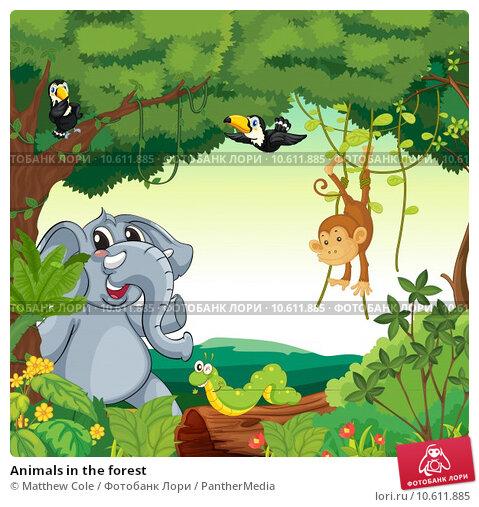 Animals in the forest. Стоковая иллюстрация, иллюстратор Matthew Cole / PantherMedia / Фотобанк Лори