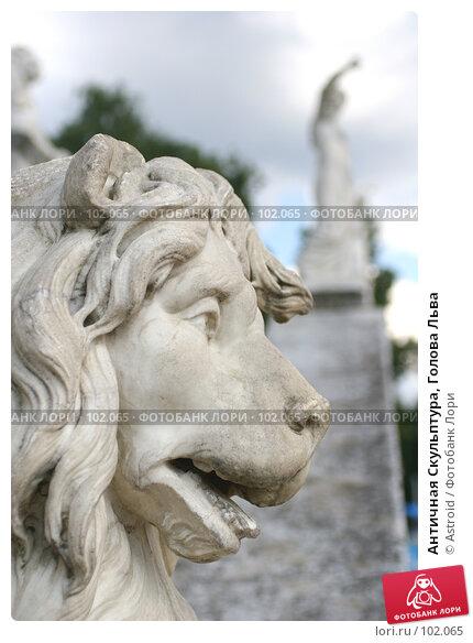 Античная Скульптура, Голова Льва, фото № 102065, снято 28 марта 2017 г. (c) Astroid / Фотобанк Лори