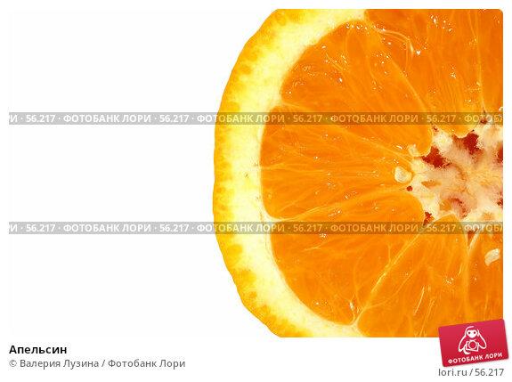 Апельсин, фото № 56217, снято 26 июня 2007 г. (c) Валерия Потапова / Фотобанк Лори