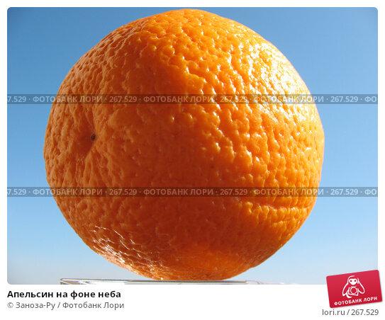 Апельсин на фоне неба, фото № 267529, снято 26 апреля 2008 г. (c) Заноза-Ру / Фотобанк Лори