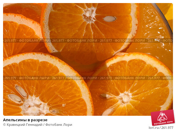 Апельсины в разрезе, фото № 261977, снято 5 сентября 2004 г. (c) Кравецкий Геннадий / Фотобанк Лори